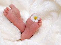 nama bayi awalan a